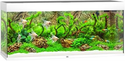 Juwel aquarium rio 240 met led verlichting en filter wit