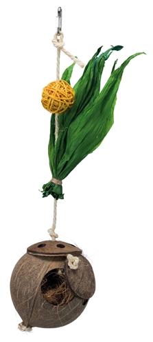 Trixie kokosnoot aan sisaltouw