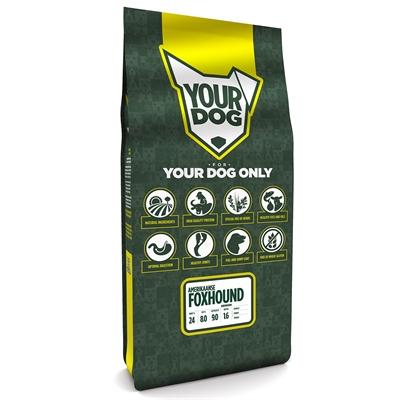 Yourdog amerikaanse foxhound senior