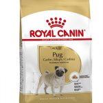 Royal canin pug mopshond