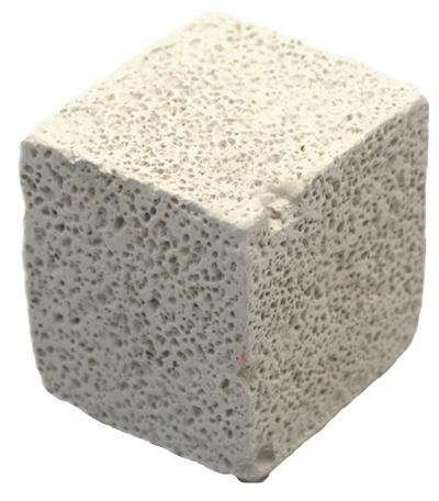 Happy pet chinchilla nibbling cube
