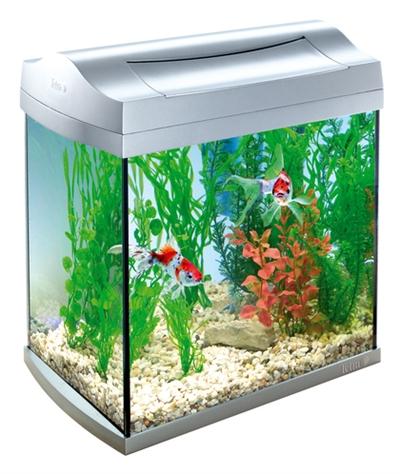 Tetra aqua-art aquarium discovery line