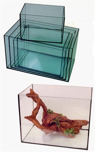 Gelijmd aquarium zwarte kitnaden